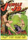 Cover For Jungle Jo 3
