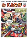 Cover For Lion 112