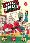 Cover For Big Shot 84