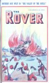 Cover For The Rover 1021