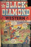 Cover For Black Diamond Western 17