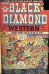 Cover For Black Diamond Western 17