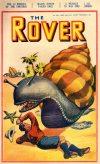 Cover For The Rover 1001