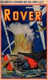 Cover For The Rover 1018