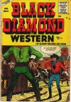 Cover For Black Diamond Western 57
