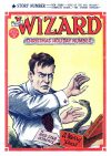 Cover For The Wizard 577