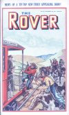 Cover For The Rover 1017