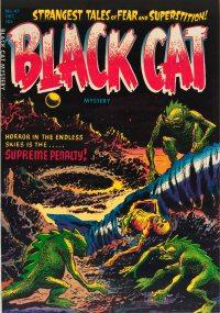 Large Thumbnail For Black Cat #47