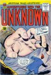 Cover For Adventures into the Unknown 123