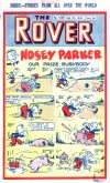 Cover For The Rover 1049