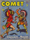 Cover For The Comet 265