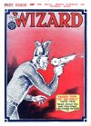 Cover For The Wizard 562