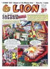 Cover For Lion 64