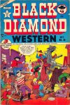 Cover For Black Diamond Western 39