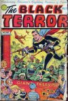 Cover For The Black Terror 12