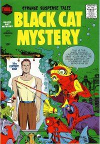Large Thumbnail For Black Cat #57