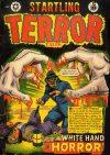 Cover For Startling Terror Tales v1 12