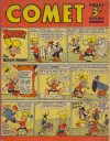 Cover For The Comet 195