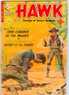 Cover For The Hawk 2