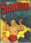 Cover For Samson 2