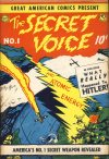 Cover For The Secret Voice 1