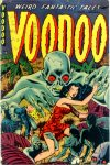 Cover For Voodoo 2