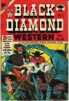 Cover For Black Diamond Western 49