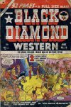 Cover For Black Diamond Western 19