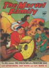 Cover For The Marvel Family 5