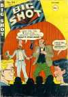 Cover For Big Shot 94
