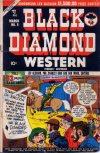 Cover For Black Diamond Western 9