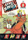 Cover For Big Shot 78