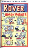 Cover For The Rover 1062