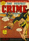Cover For The Perfect Crime 6