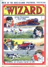 Cover For The Wizard 233