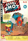 Cover For Big Shot 54