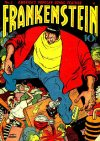 Cover For Frankenstein 2