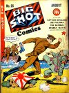 Cover For Big Shot 26