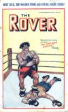 Cover For The Rover 1024