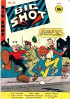 Cover For Big Shot 65