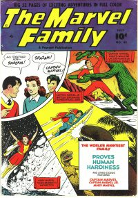Large Thumbnail For The Marvel Family #49