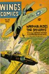 Cover For Wings Comics 63