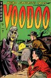 Cover For Voodoo 1