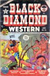 Cover For Black Diamond Western 25