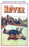 Cover For The Rover 1028
