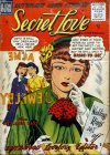 Cover For Secret Love 3
