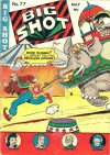Cover For Big Shot 77
