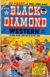 Cover For Black Diamond Western 21