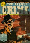 Cover For The Perfect Crime 9