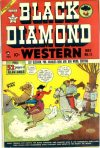 Cover For Black Diamond Western 11